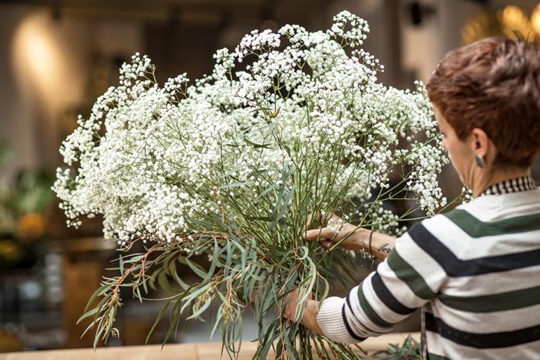 fiori-edelweiss-nova-ponente-04