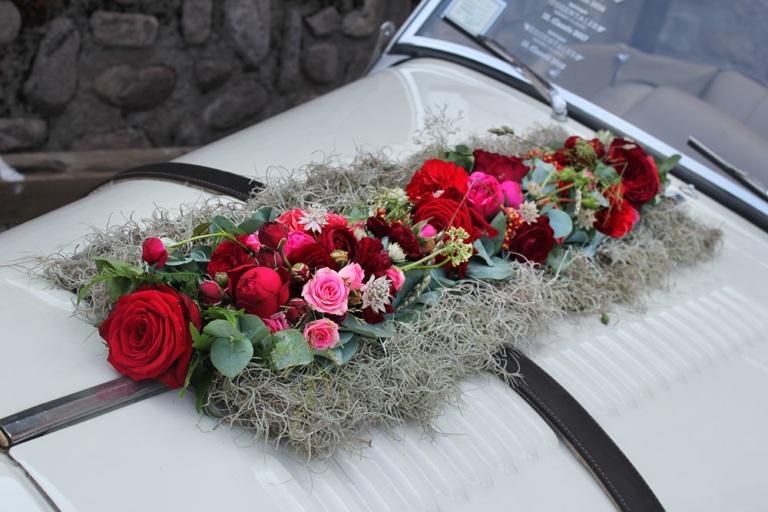 fiori-edelweiss-nova-ponente-05